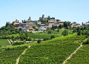 Vinmarker i Piemonte