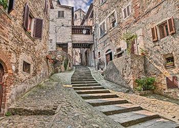 Trapper i Arezzo