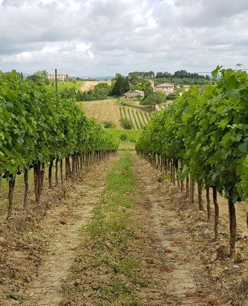 Toscana - stedet for agriturismo